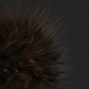 hair render test with curves