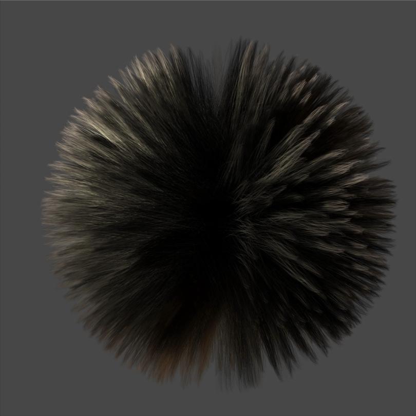 hairtest.jpg?x53801